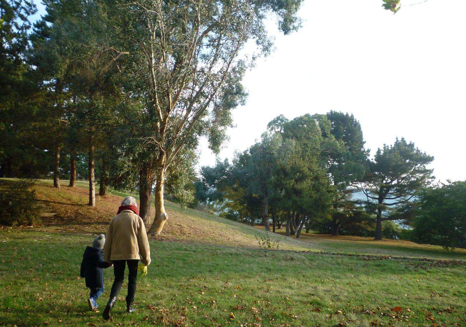 En ballade au parc départemental de Port-Es-Leu